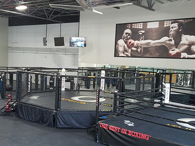 Mixed Martial Arts Cage, Boxing Ring, Punching Bags and Wrestling Mats